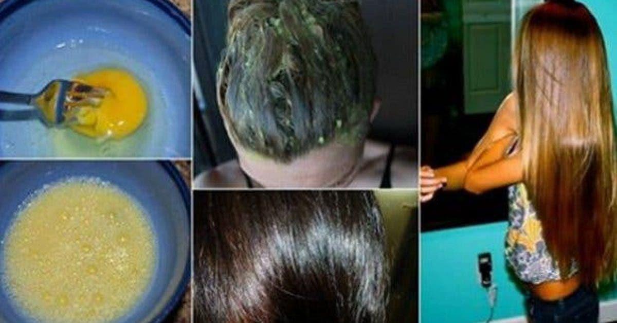 les 13 meilleurs remedes naturels pour faire pousser les cheveux plus vite 2