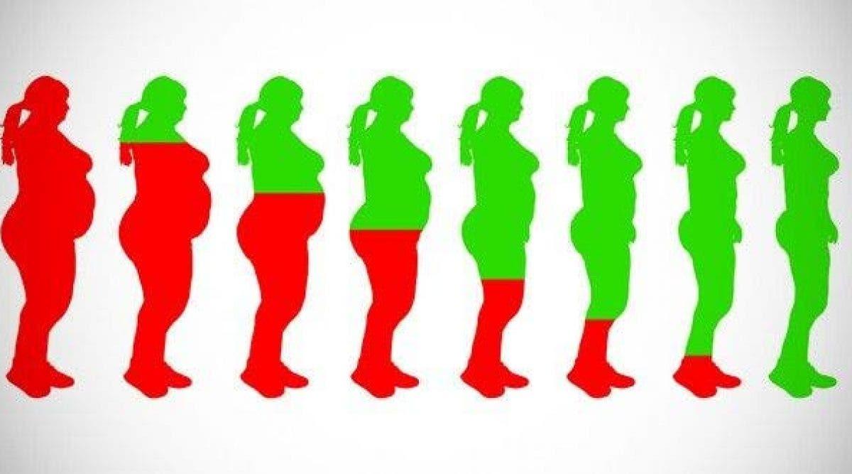 quel aliment pour réduire la graisse