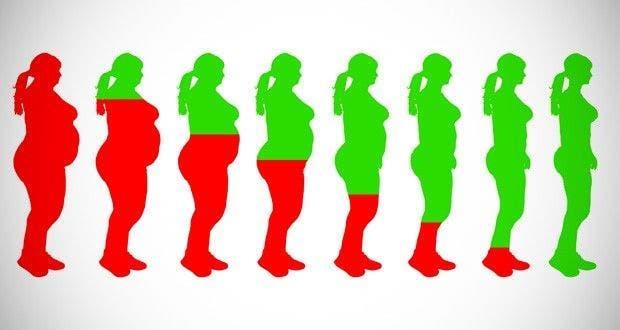 les 20 meilleurs aliments pour perdre du poids rapidement. Black Bedroom Furniture Sets. Home Design Ideas