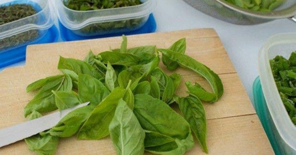 les 5 meilleures recettes de marinades aux herbes aromatiques 1