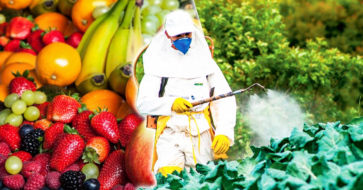 les-aliments-les-plus-contamines-par-les-pesticides-et-comment-nettoyer-chacun-dentre-eux