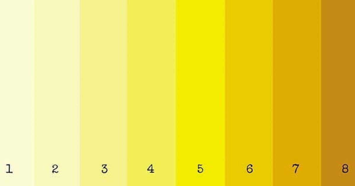 les couleurs des urines et leurs significations11