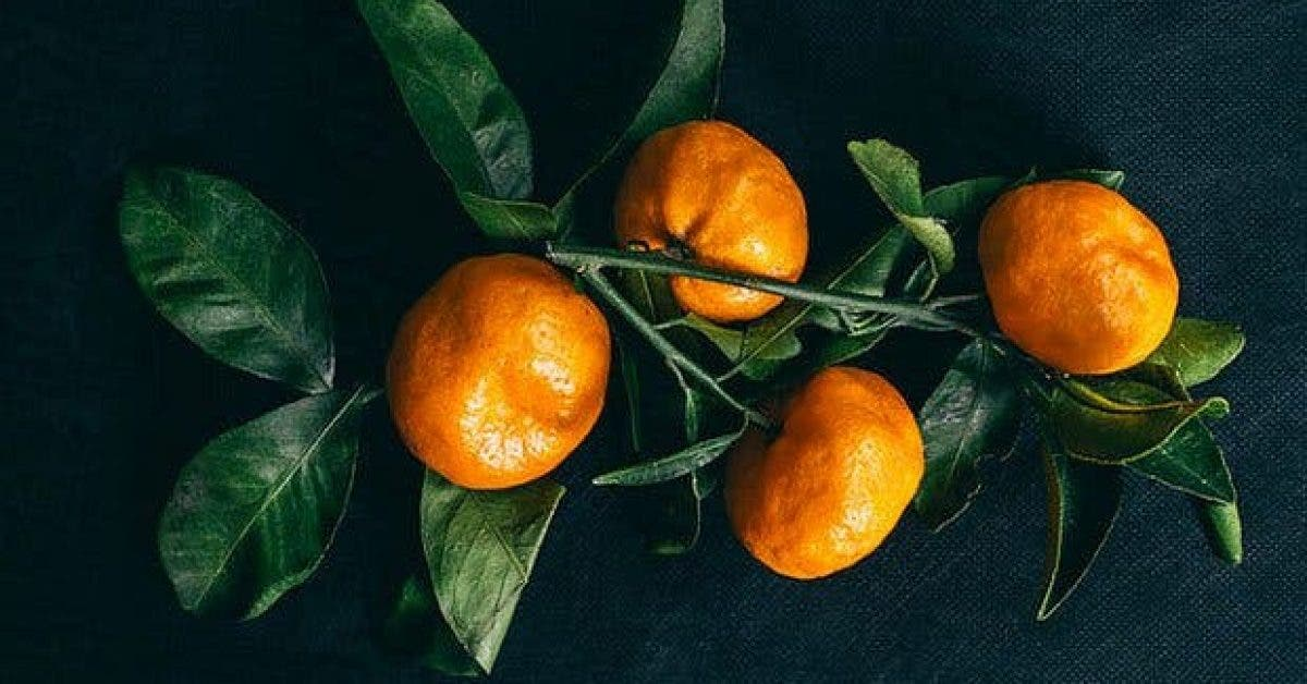 les fruits qui nous donnent de lenergie11