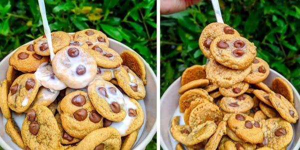 les-gens-transforment-de-minuscules-cookies-en-cereales-pour-le-petit-dejeuner-et-cest-la-nouvelle-tendance-la-plus-en-vogue-sur-tik-tok