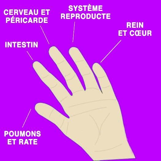 les-lunules-de-vos-ongles-peuvent-indiquer-ces-5-problemes-de-sante-1