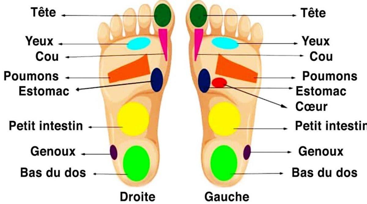 les-pieds-sont-relies-a-tous-les-organes-et-chaque-douleur-peut-etre-soigne-en-massant-les-pieds