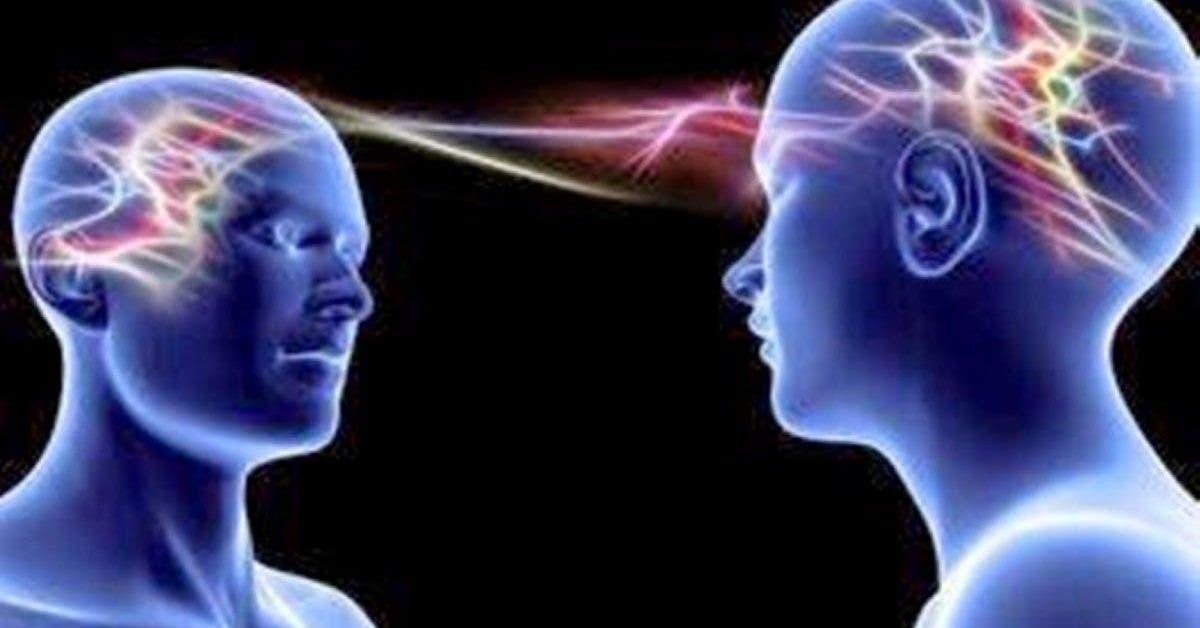 les scientifiques ont reussi a connecter le cerveau de 3 personnes leur permettant de partager leurs pensees 1