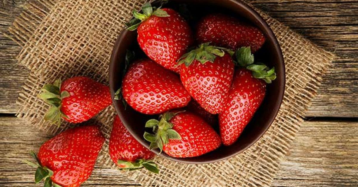 les vertus medicinales des fruits rouges11