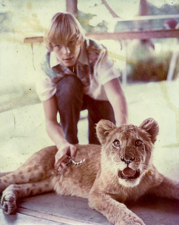 lion2 1