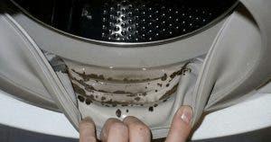 machine-a-laver-6-astuces-super-efficaces-pour-la-garder-toujours-propre