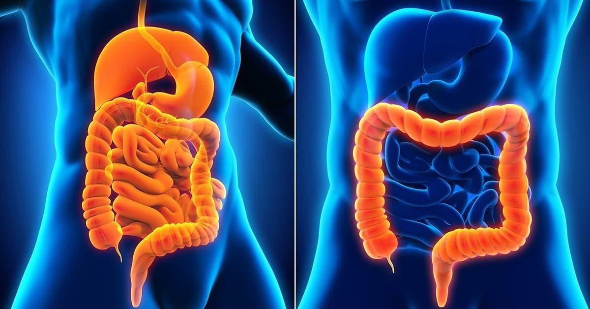 maladie crohn
