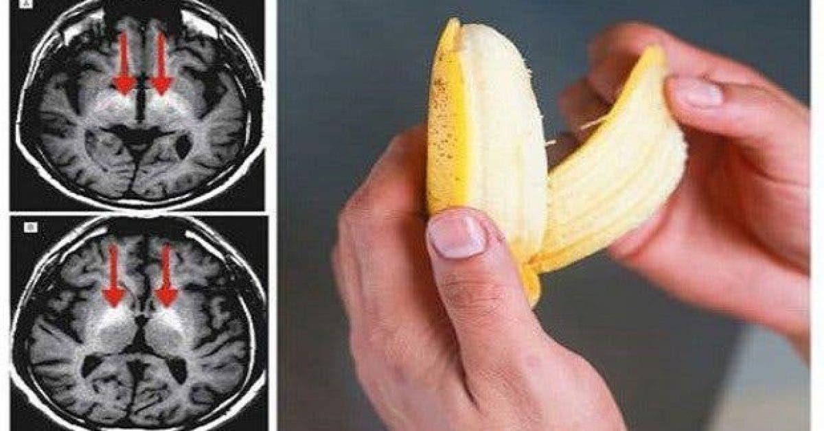 manger trois bananes par jour permet de prevenir plus de 5 maladies voici pourquoi elle est plus efficace que certains medicaments 1 1