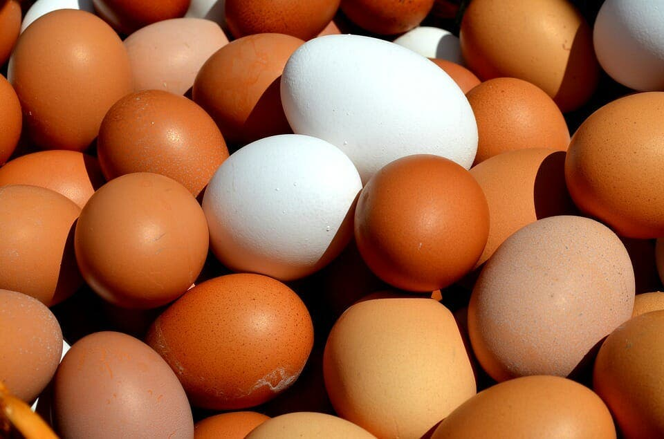 10 choses qui se produisent lorsque vous mangez deux oeufs par jour