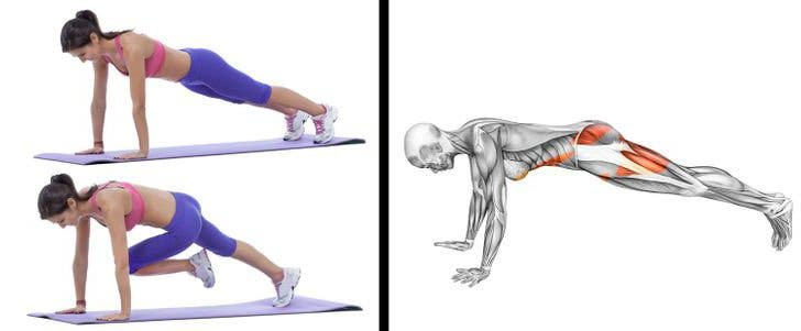lower body muscles