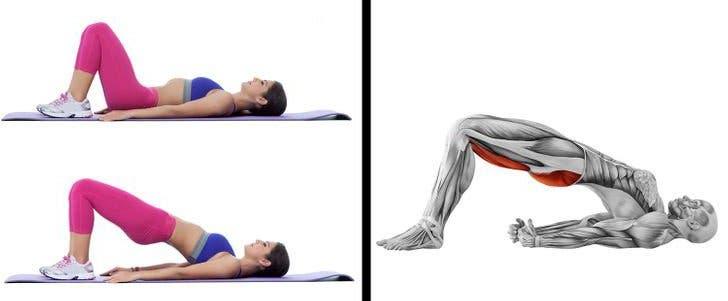 muscular buttocks