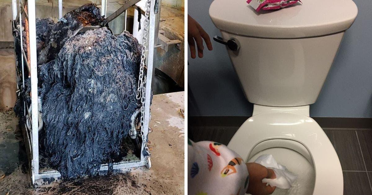 ne jetez plus les lingettes dans vos toilettes 1 1