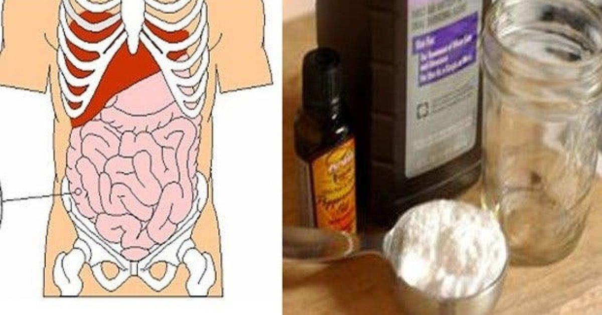nettoyez votre colon en 2 semaines eliminez jusqua 8 kg de dechets de votre corps 1 1