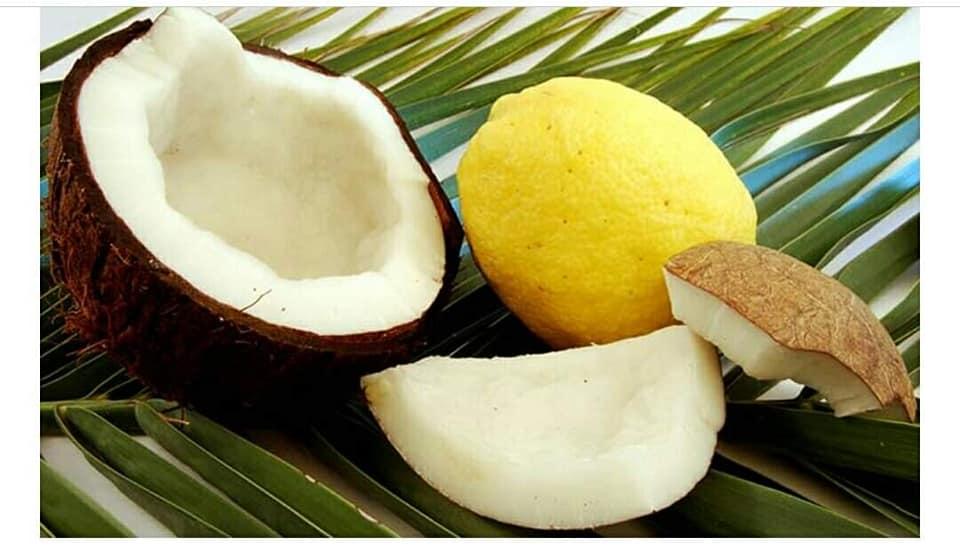 noix de coco citron