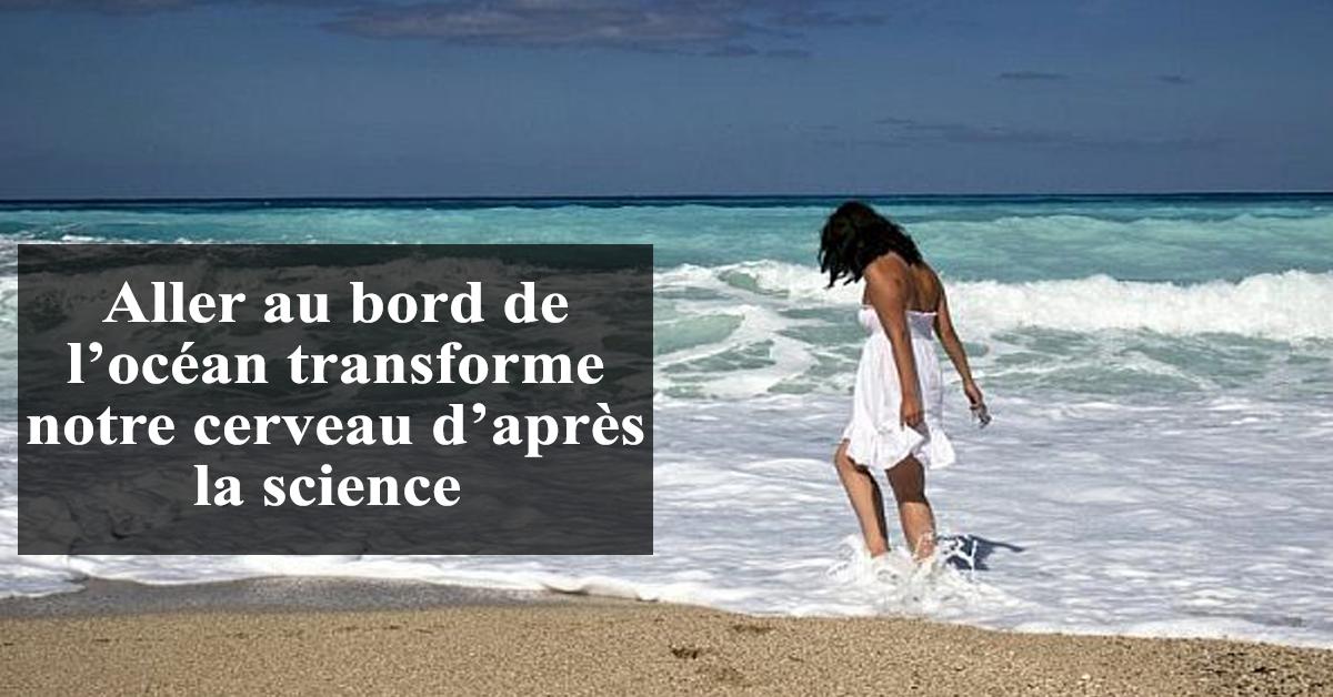 l'océan transforme notre cerveau d'après la science