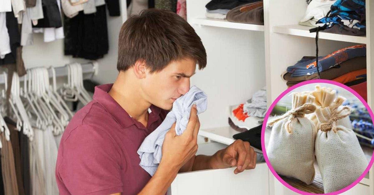 Apprenez à éliminer l'odeur de moisi du placard pour que vos vêtements sentent toujours bon