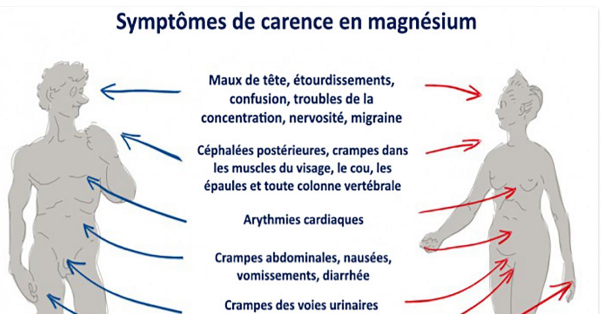 on devrait tous consommer du magnesium tous les jours il soigne 6 problemes de sante 1 1