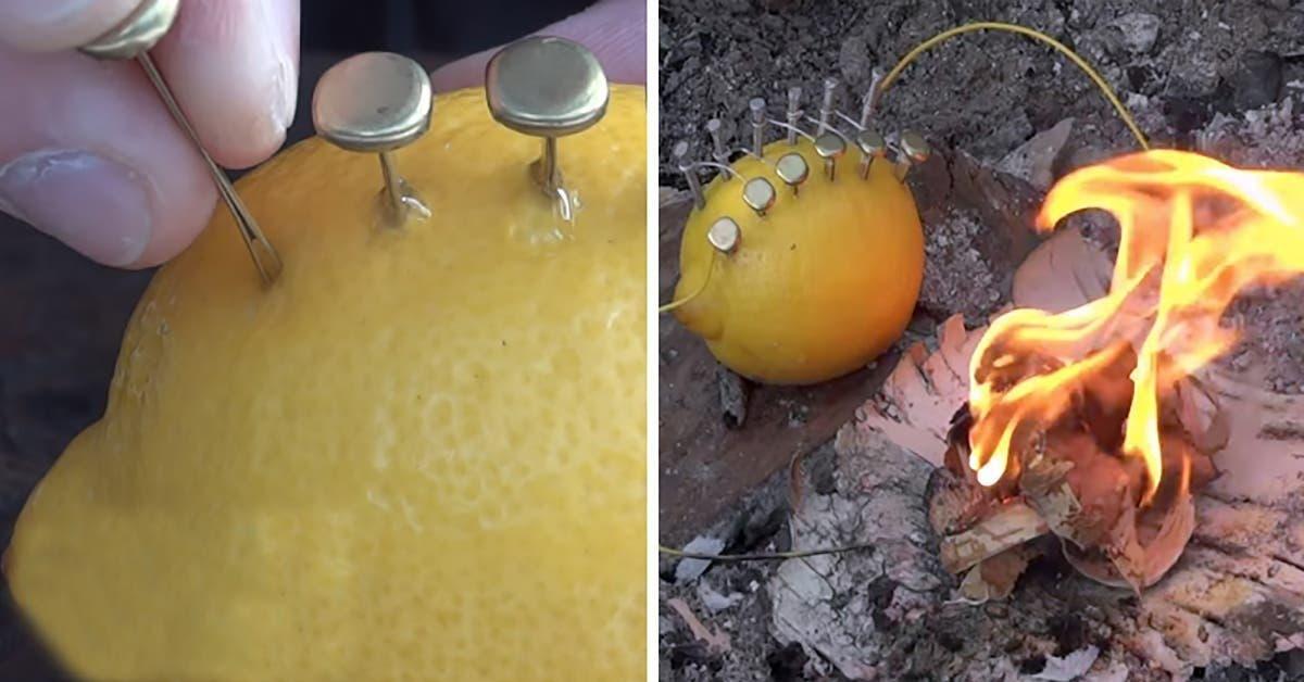 on vous explique comment faire du feu juste avec un citron 1