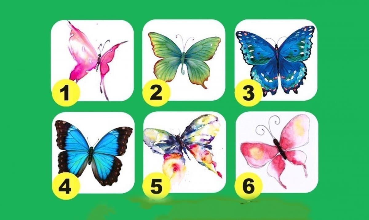 Le test des papillons