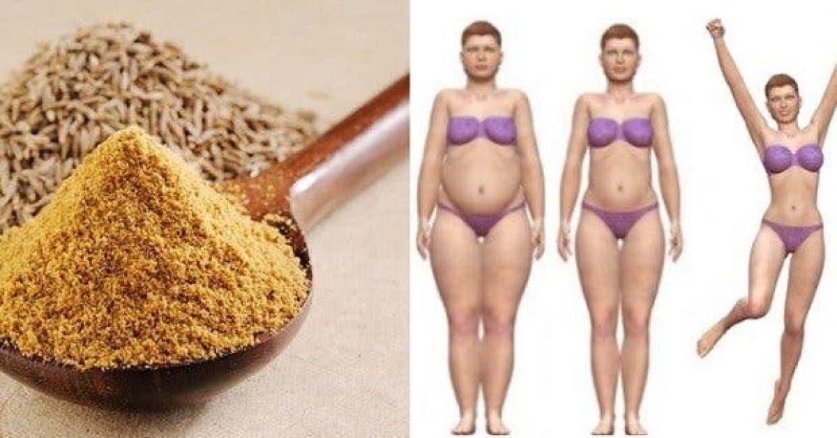 perdez jusqua 15 kg en 3 mois grace a ce tueur de graisses 1 1