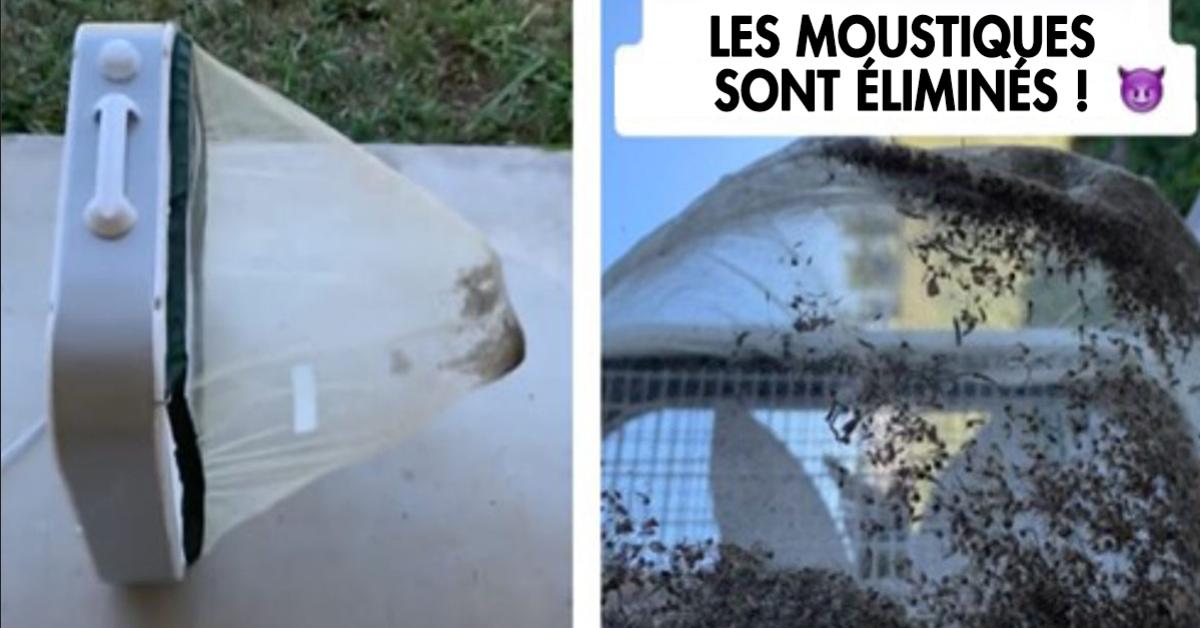 Comment faire un piège à moustique en moins de 10 minutes