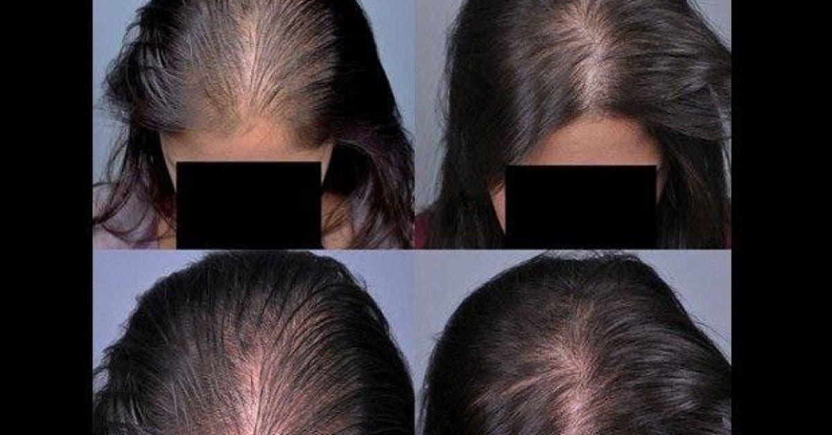 pour des cheveux qui poussent rapidement essayez le secret des indiennes 1