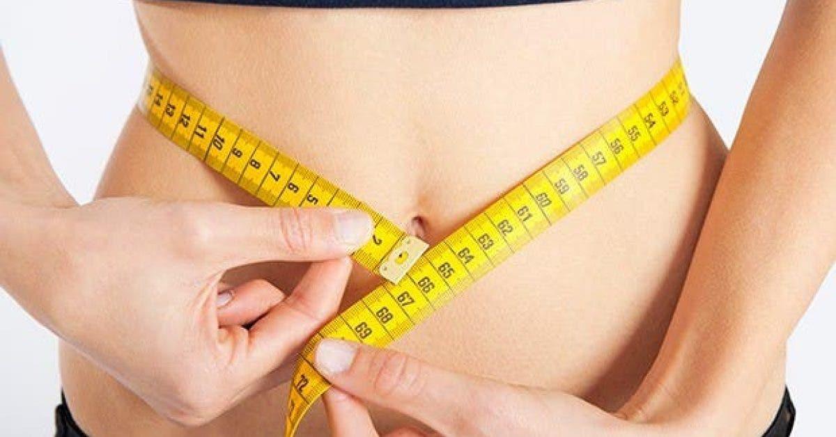 pourquoi est il difficile de perdre la graisse du ventre et comment y remedier 1