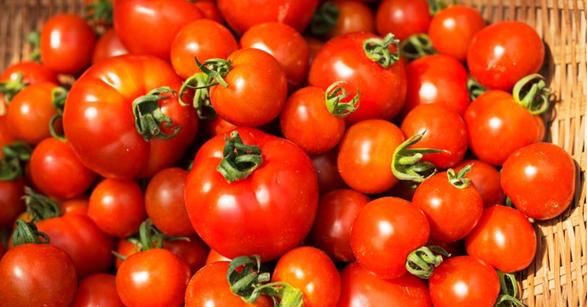 pourquoi tomate vous garde bonne sante 1