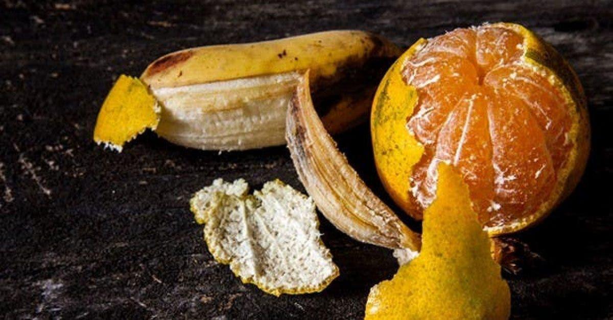 pourquoi vous devriez garder les peaux de banane et dorange 1