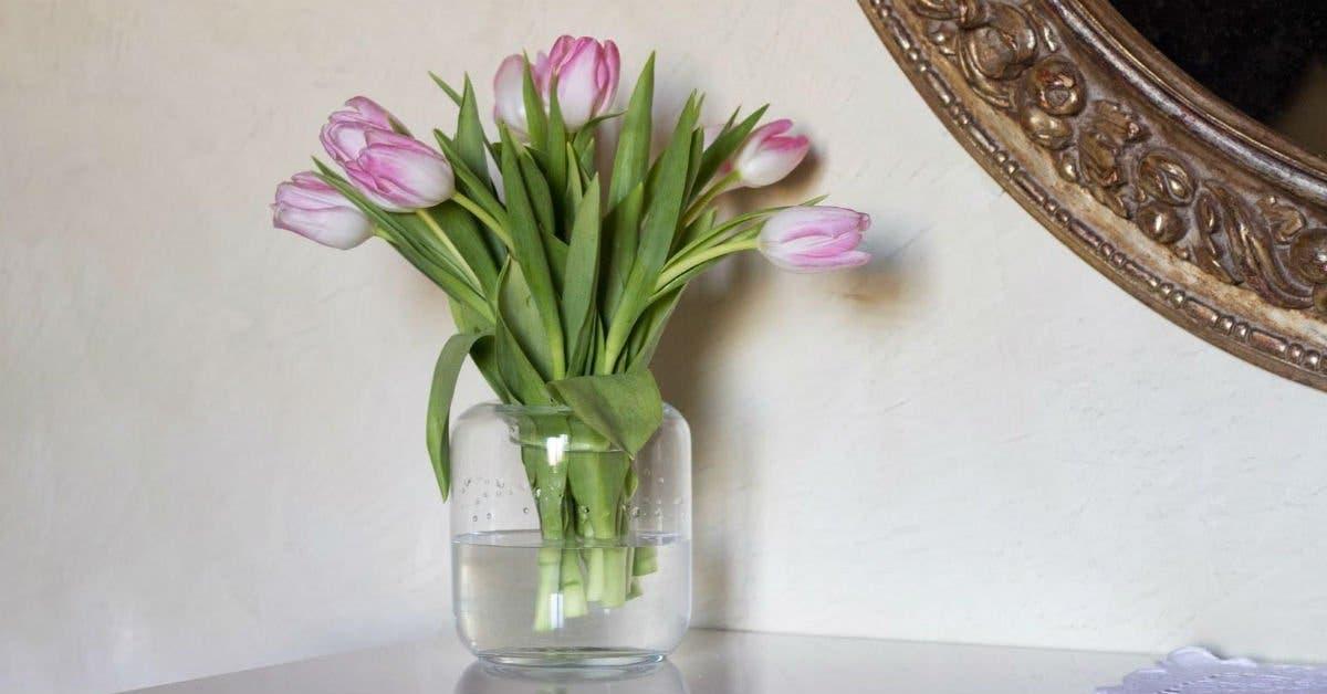 prolonger duree de vie des fleurs