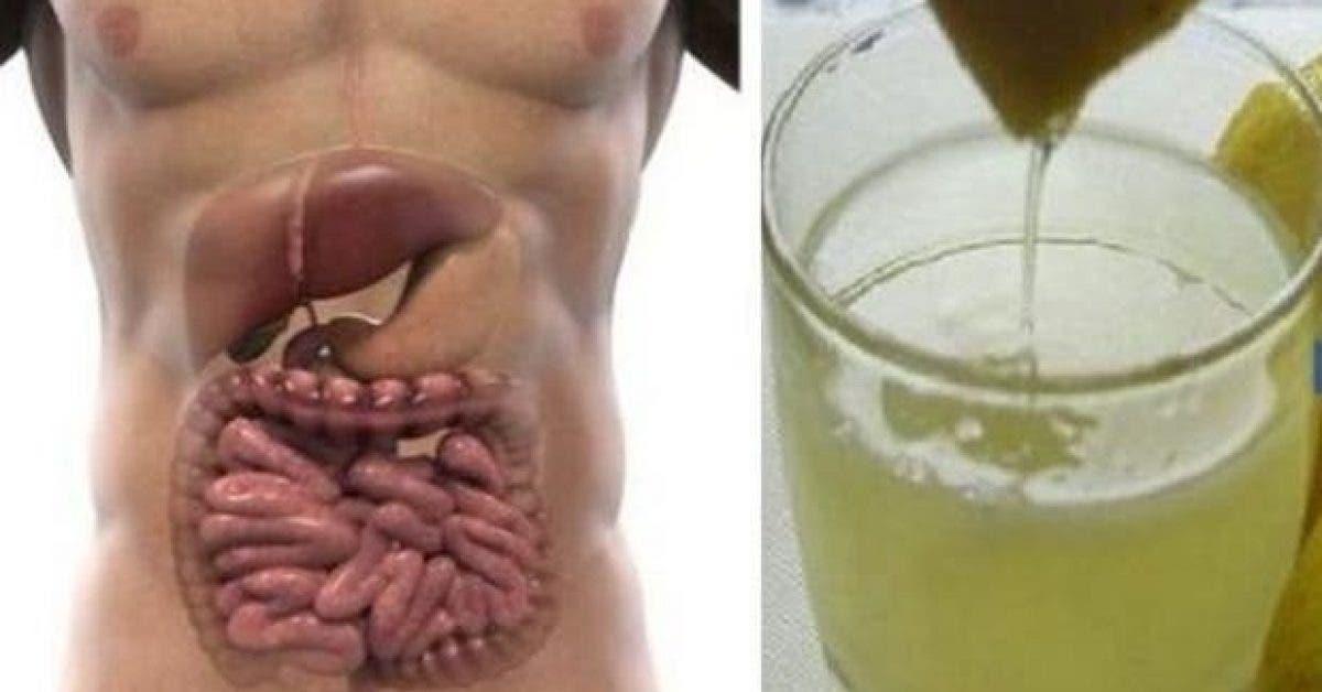 purifiez votre organisme en 3 jours grace a cette cure detox complete 1