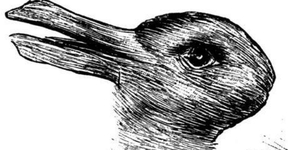 qu est ce que vous voyez en premier un lapin ou un canard 1