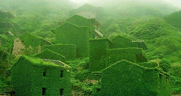 Quand la nature reprend ses droits sur les constructions humaines : époustouflant !