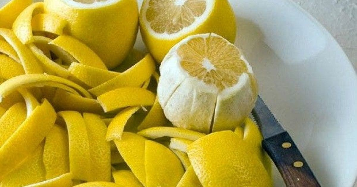 que faire avec les zestes de citron vous nallez pas le croire 1