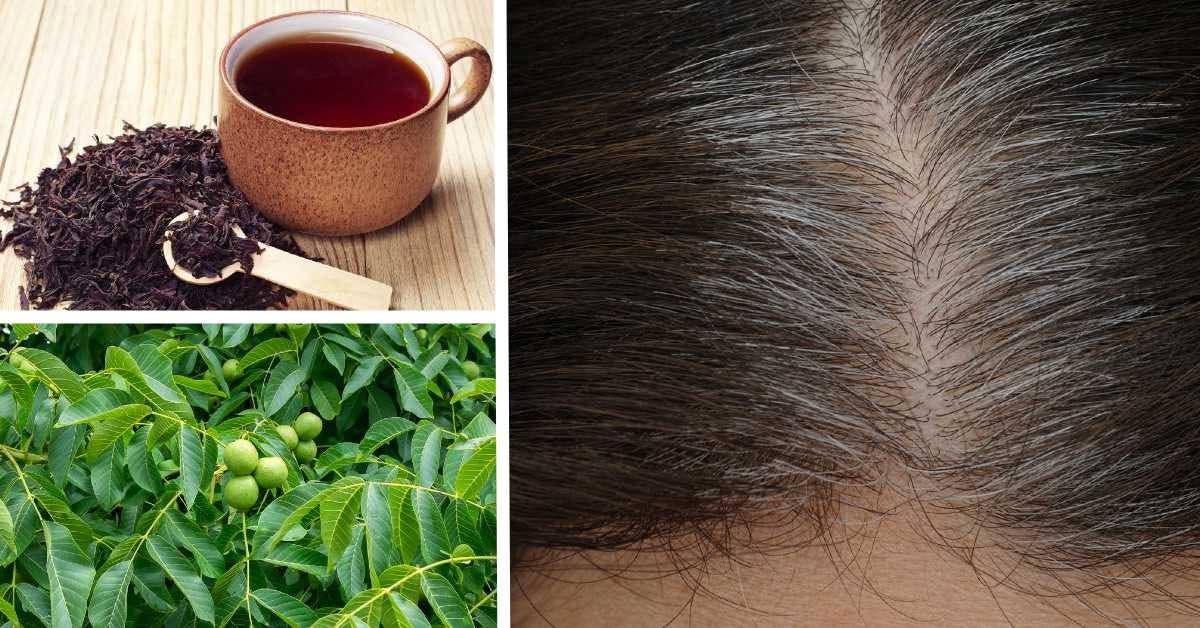 racines de cheveux