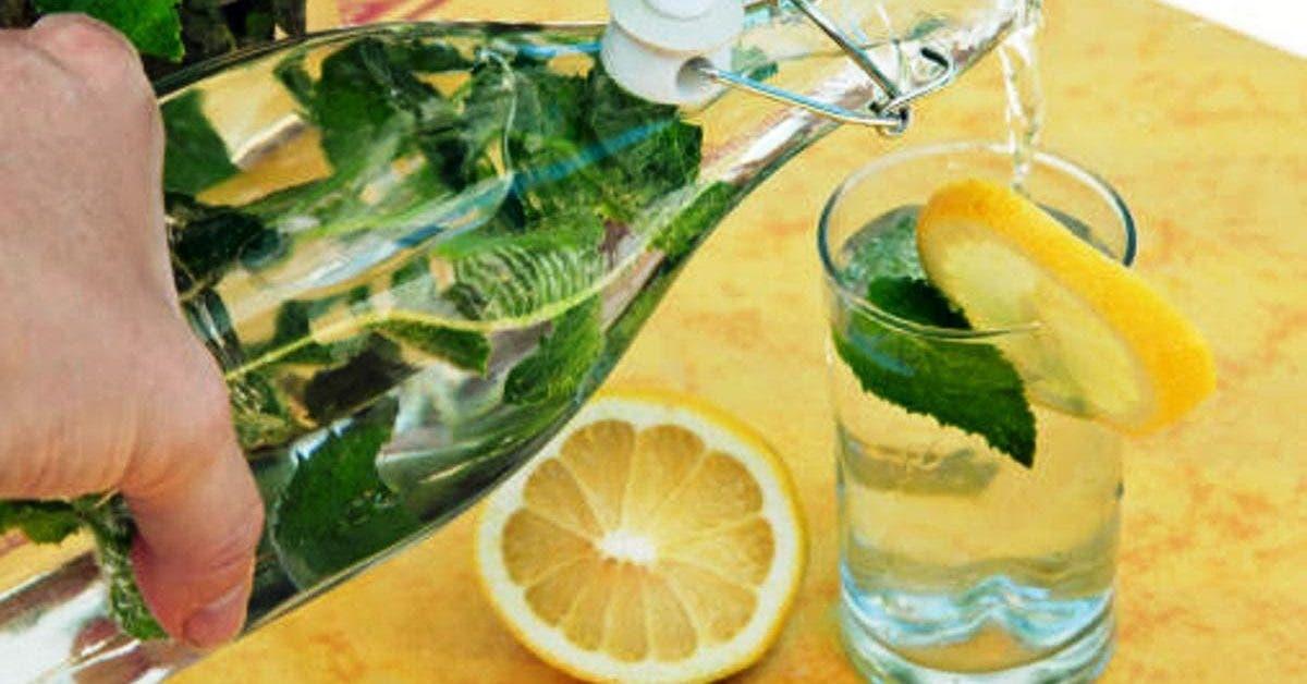 voici la boisson préférée des diététiciens pour perdre du poids naturellement à la maison