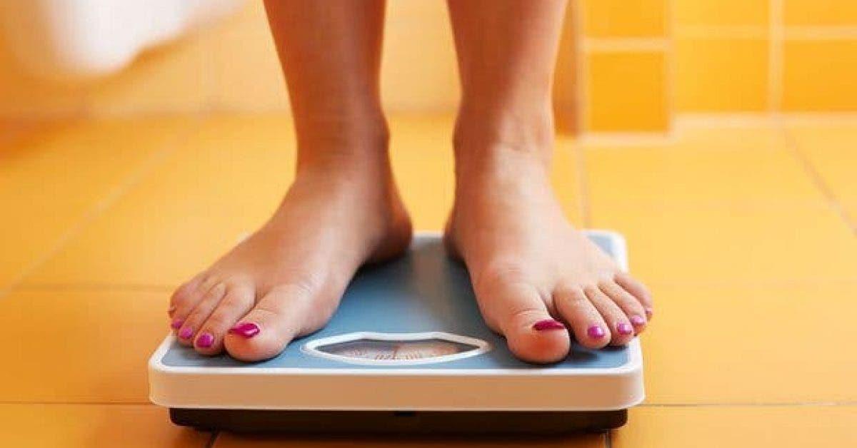 regles paresseuses pour perdre du poids2