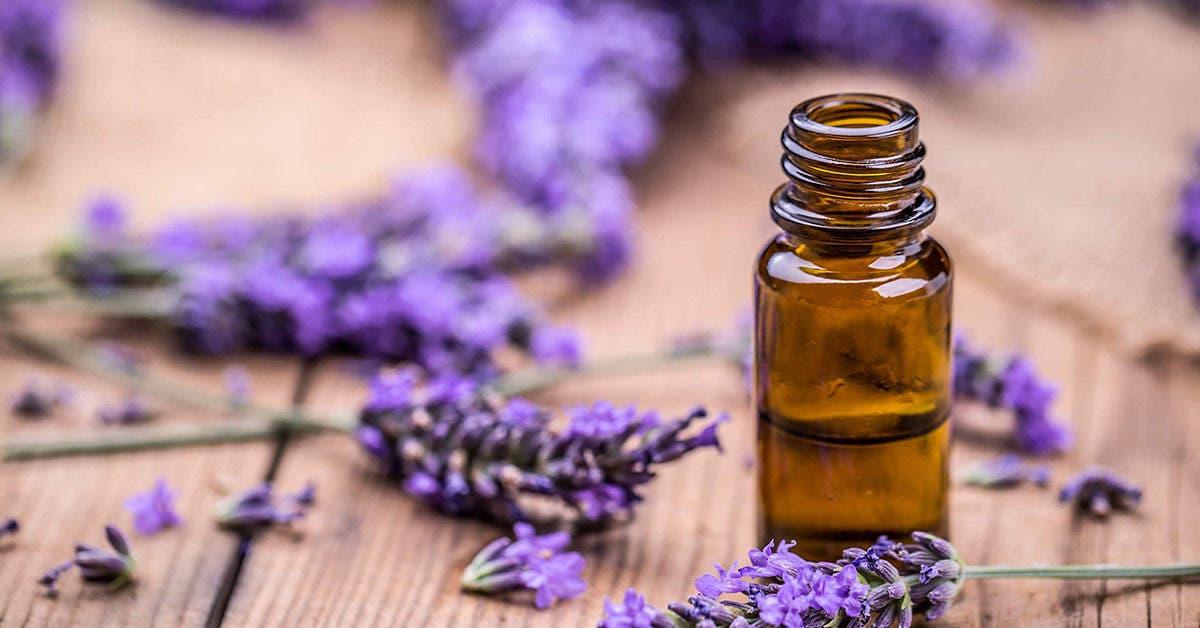 Blessures, coupures et écorchures : 13 remèdes naturels pour les traiter