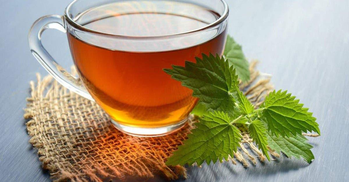 Bronchite : 29 remèdes pour la traiter naturellement