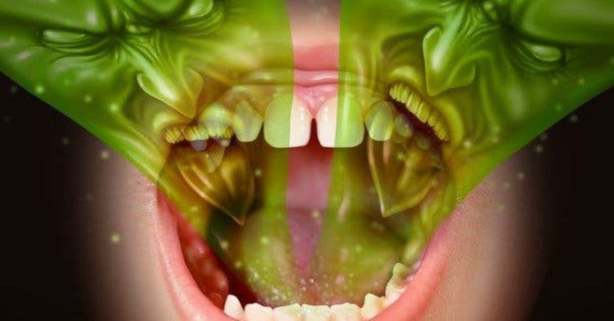 remedes naturels contrela mauvaise haleine 1