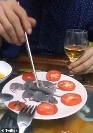 Un chinois trempe une souris vivante dans la sauce avant de la manger