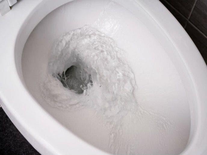 rincez toilette