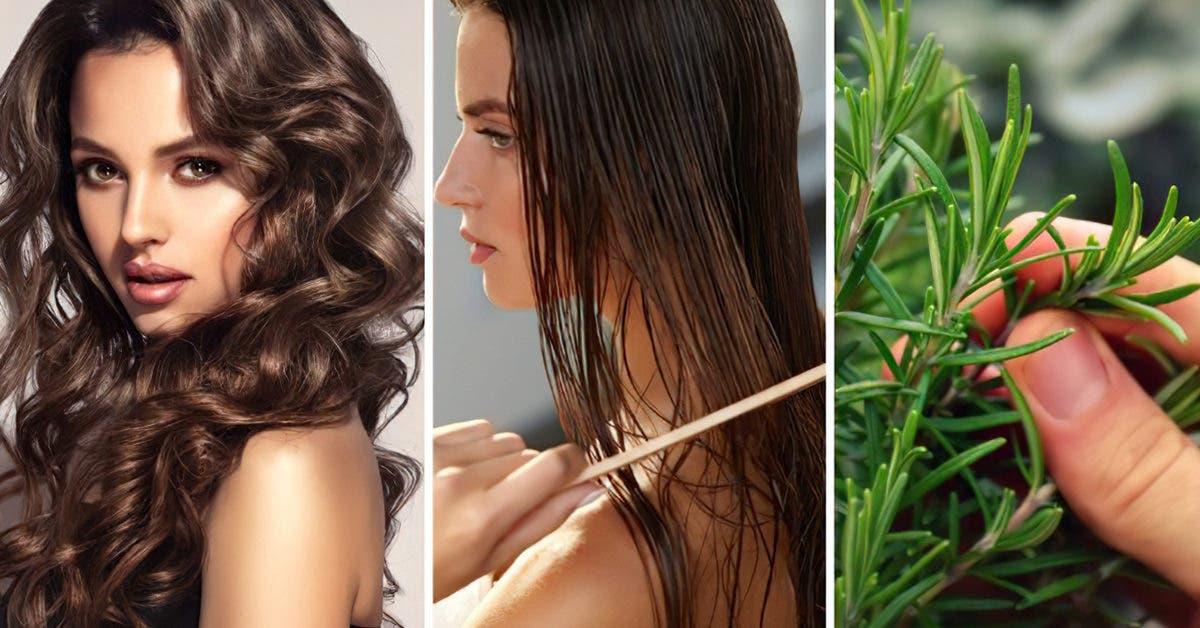 3 traitements au romarin qui stoppent la chute des cheveux et les font pousser