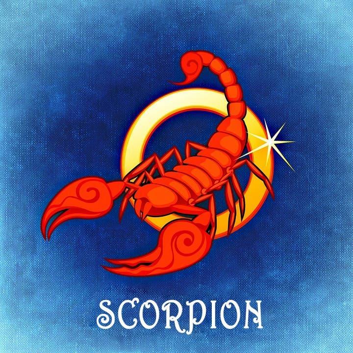 scorpion 13