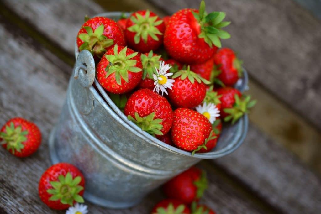 seau de fraises