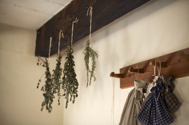 sechage-herbes-aromatiques